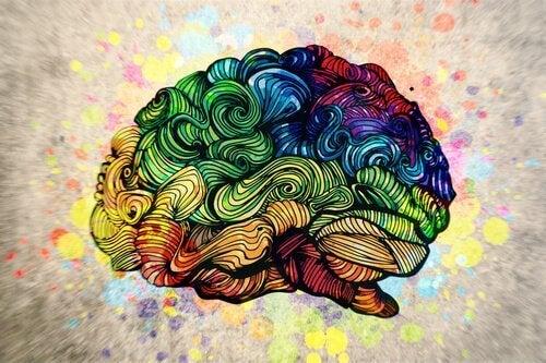 Cervello visto in ambito artistico