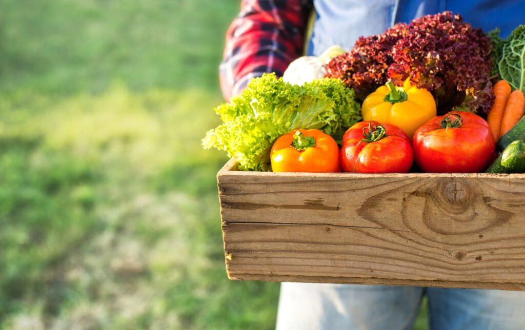 Online il primo e-commerce degli agricoltori italiani