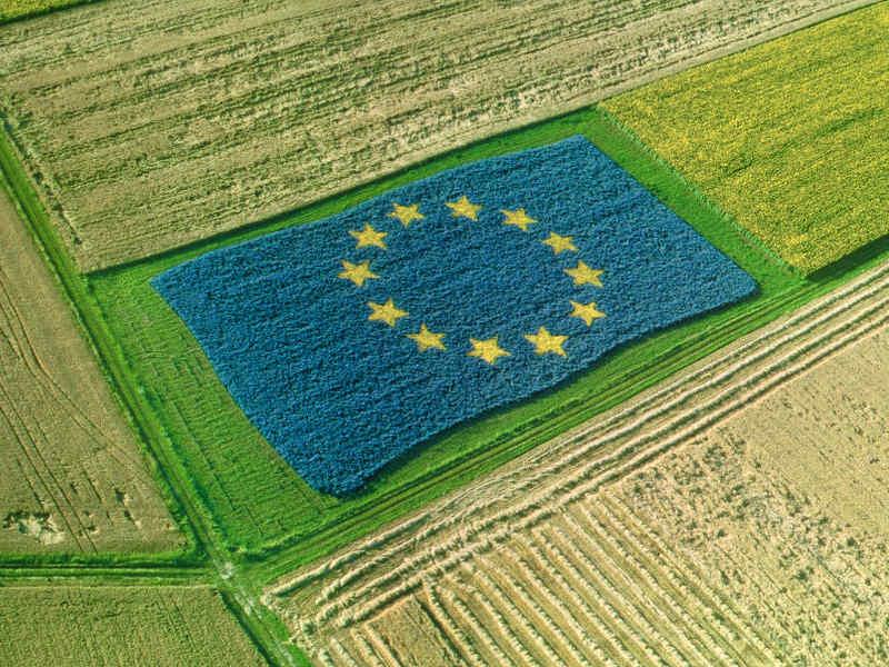 foto campo agricolo con bandiera europea