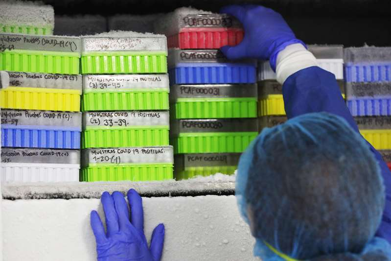 Scoperto test rapido per diagnosi varianti